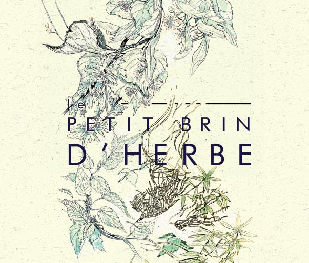 LE PETIT BRIN D'HERBE